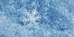 Froid, froid... et neige