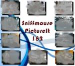 PictureIt 182 - Sniffmouse