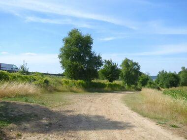 Le circuit du Bois des Vignes