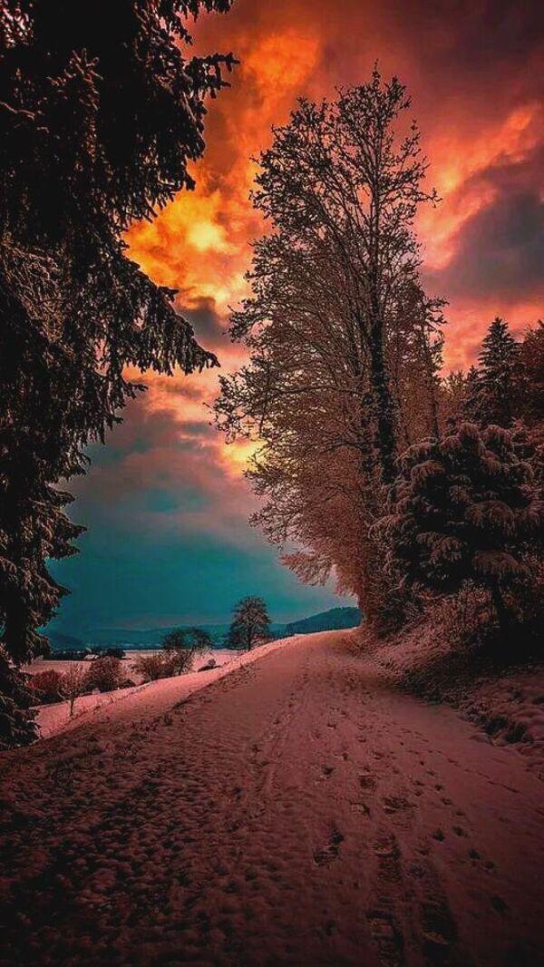 Coucher de soleil en hiver