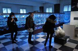 Musée d'histoire naturelle: 9 mars