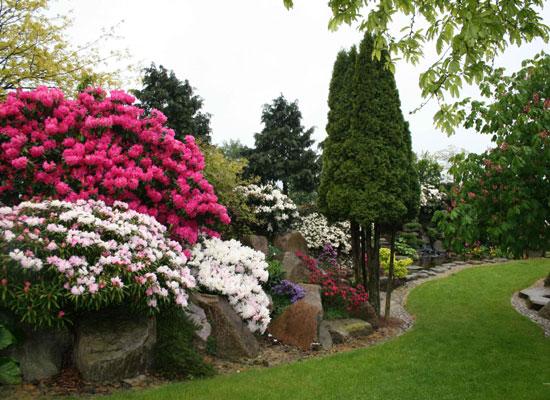 Kertek tavasszal - png képeken