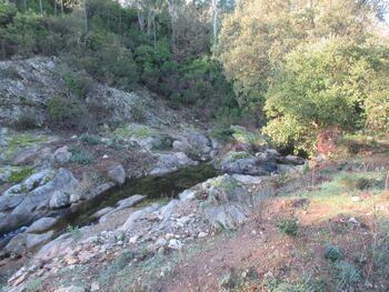 Le ruisseau des Caunes en aval de la maison forestière