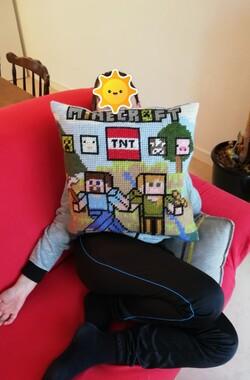 Canevas : créer un coussin personnalisé - exemple : Minecraft