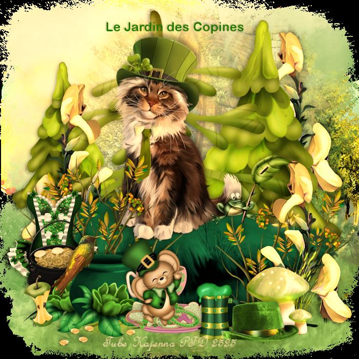 Concours St-Patrick du Jardin