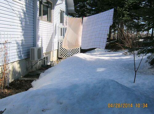 Lilas glacé en ce 28 avril...