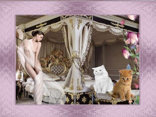 fuer die katzen liebhaber gruss jasmin