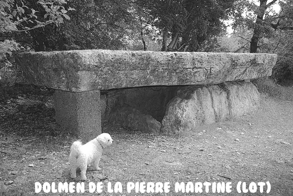 DOLMEN DE LA PIERRE MARTINE (LOT)
