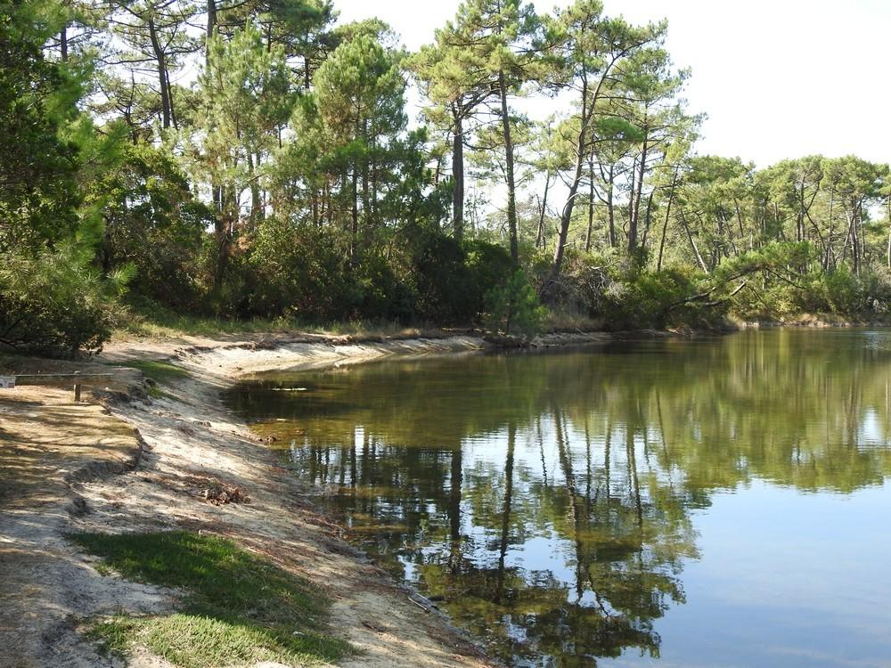 Balade aux Réservoirs de Piraillan : reflets...