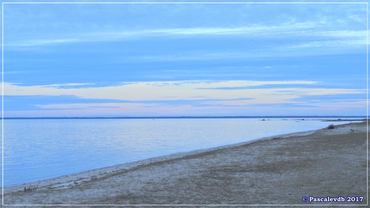 Entre le Port du Rocher et le Port de La Hume - Fin Janvier 2017 - 4/7