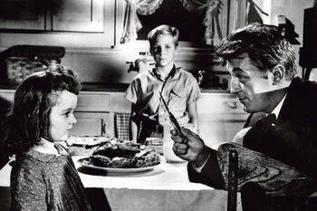 La nuit du chasseur ( 1956 )
