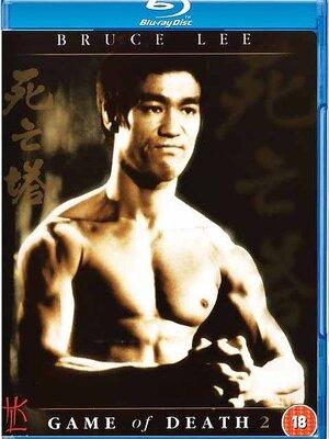 Après la mort suspecte de son ami Ching Ku, Billy Lo enquête. Il suspecte un gang de l'avoir tué. À force d'investigations, Billy finit par se faire tuer. Son frère Bobby Lo prend la suite de l'enquête. Il découvre une société secrète cachée dans une forteresse souterraine....-----...Origine du film : Hong-kongais Réalisateur : See-Yuen Ng Acteurs : Bruce Lee, Tai Chung Kim, Jang Lee Hwang Genre : Action Année de production : 1981 Titre Original : Si Wang Ta