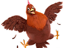 Poulet Hayday