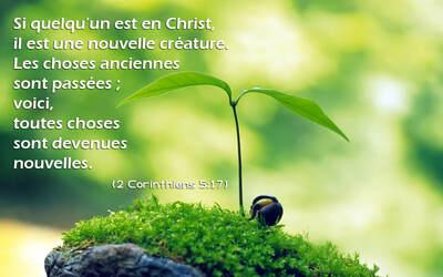 Toutes Choses Nouvelles - Lecture et Prière (1)