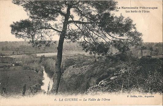 LA COURBE