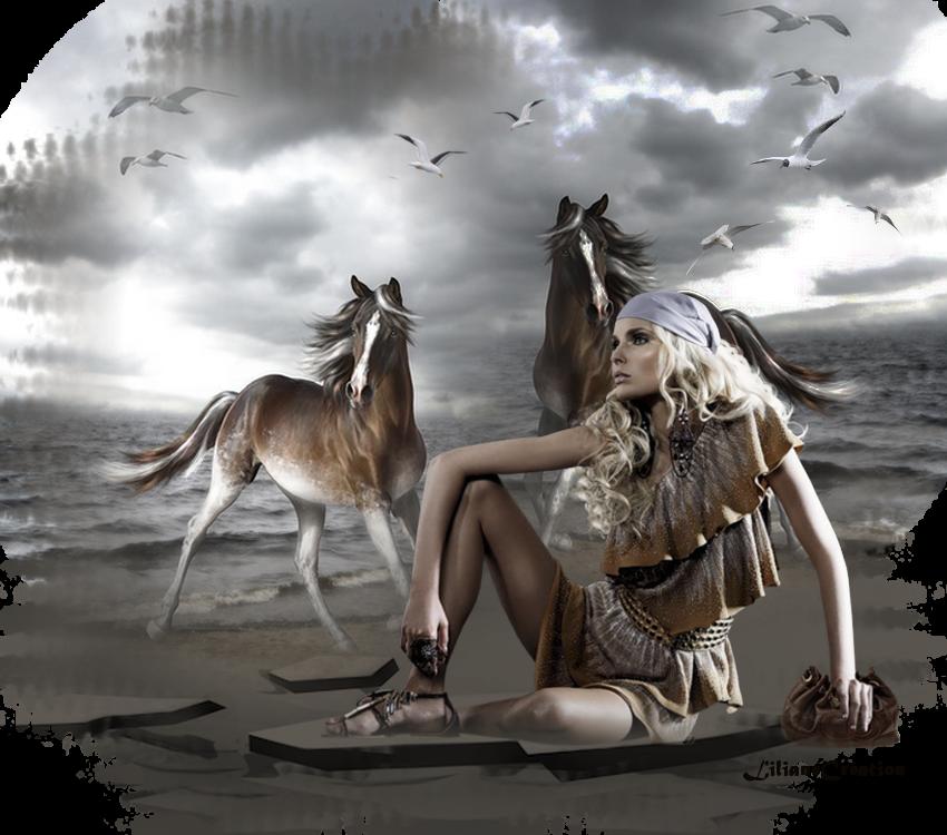 La belle et ses chevaux