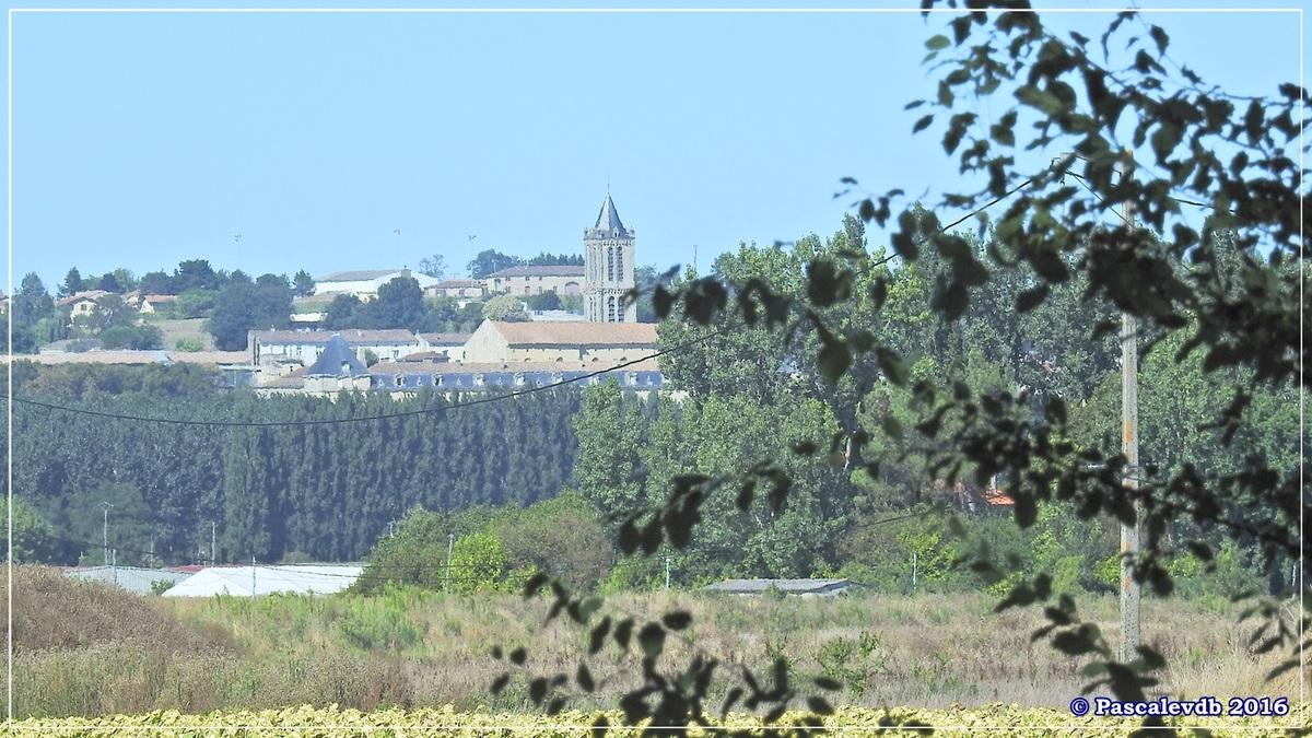 Le long du canal latéral à la Garonne - Août 2016 - 9/12