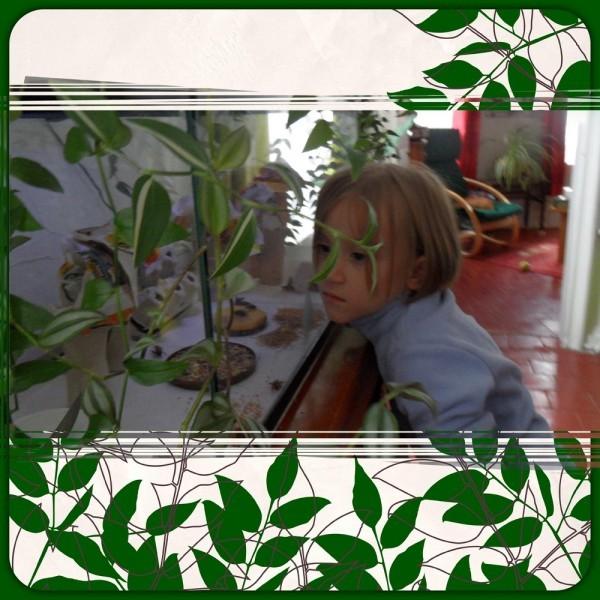 grillon 07