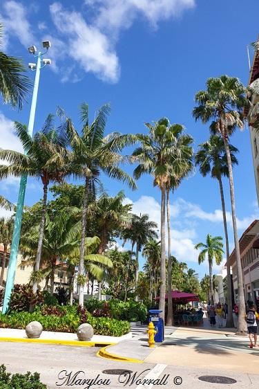 Floride : Après-midi du 23 septembre 2019