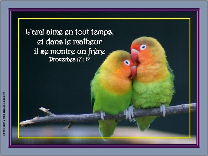 L'ami aime en tout temps - Proverbes 17 : 17