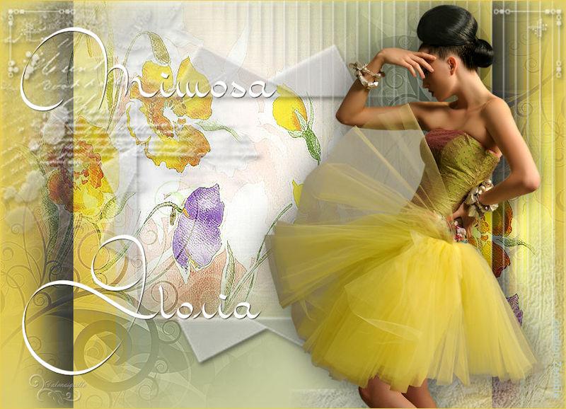 *** Mimosa Gloria ***