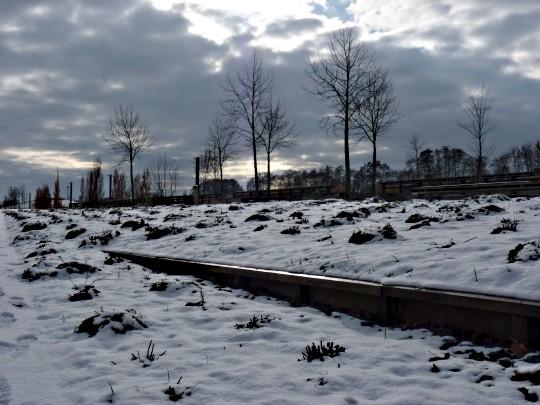 Le Tremblement de ciel de Metz 12 03 02 2010
