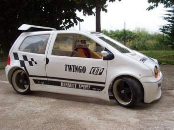 Twingo Yankee 2013 Brushless (257)
