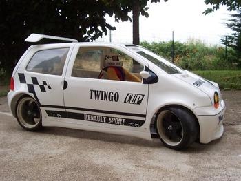 Twingo Yankee 2013 Brushless (257)