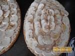 Bruschetta végétarienne aux champignons de Paris