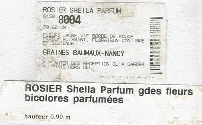 Sheila, Reine des Dahlias... 2010