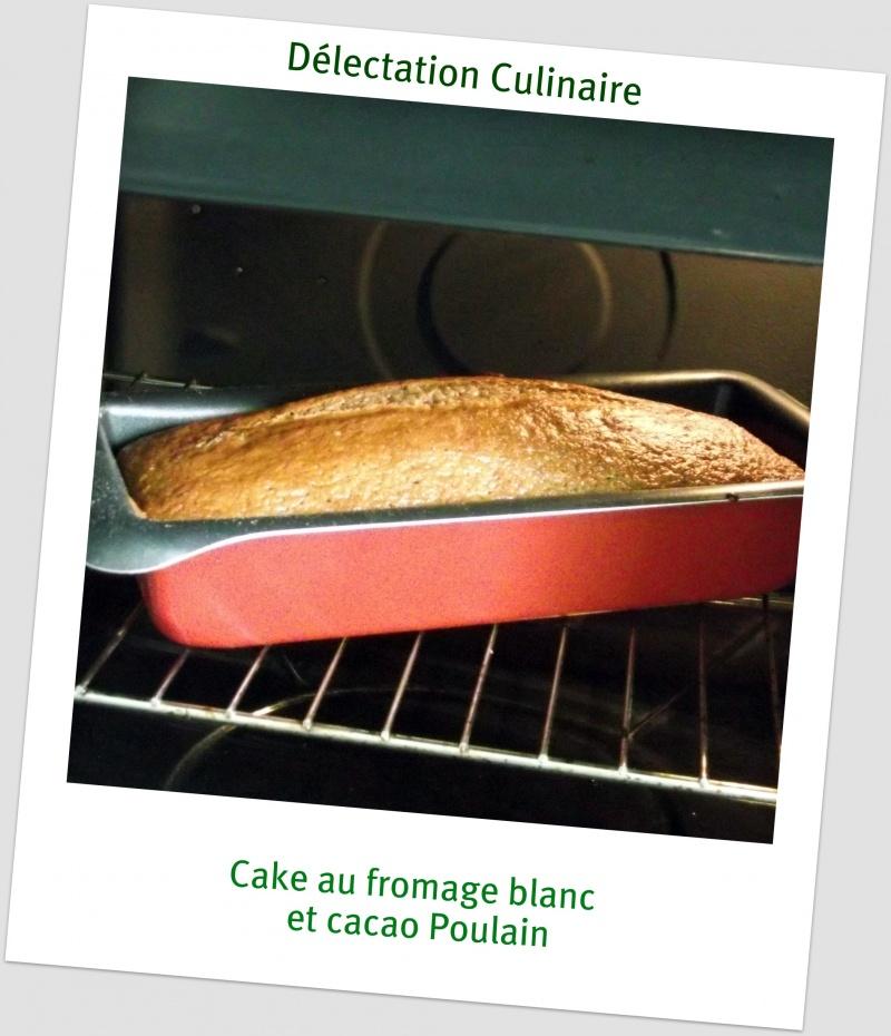 Cake au fromage blanc et au cacao Poulain