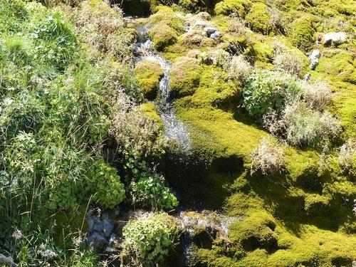 Fontaine de Mougious (Lus le Croix Haute)
