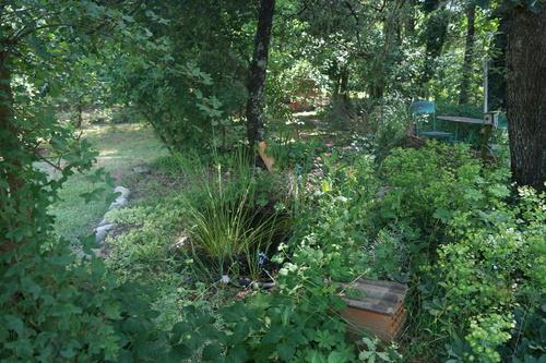 Instants nature au Jardin
