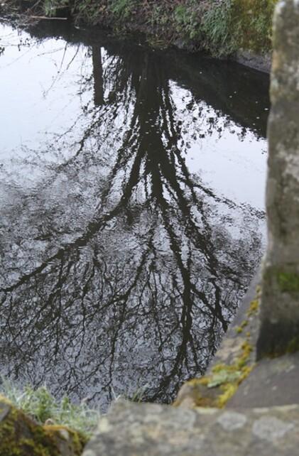 Du côté de Pontrieux (22) fév.2012 062