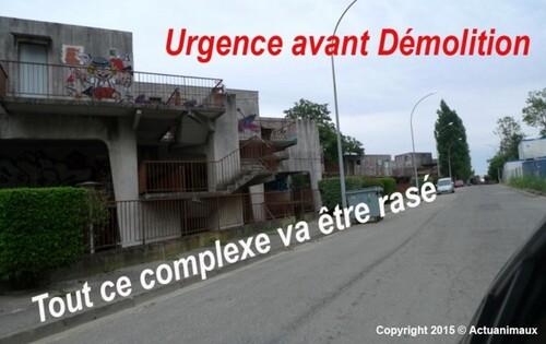 Chat Libre Du Campus Mirail-Jean Jaures