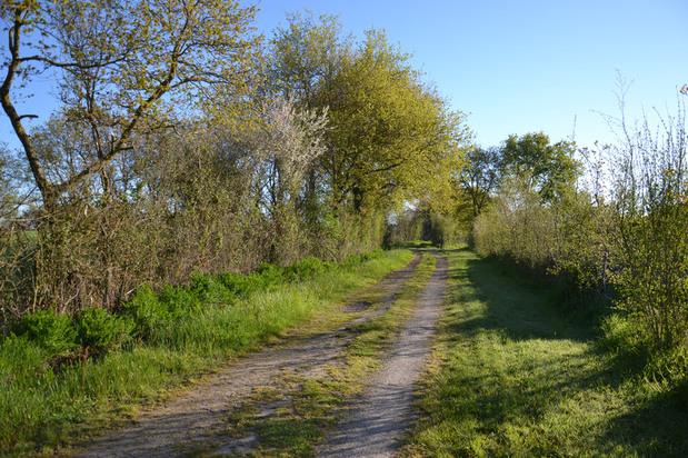 Mardi - Les sentiers Septiérois