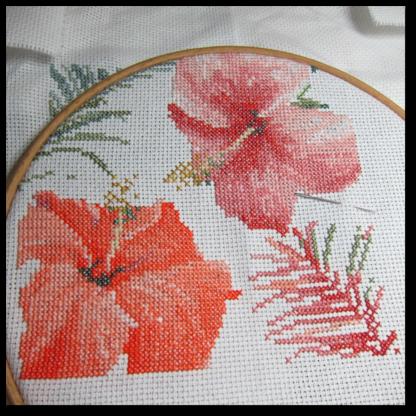 Aquarelle Hibiscus