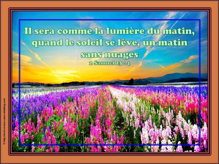 Il sera comme la lumière - 2 Samuel 23 : 4