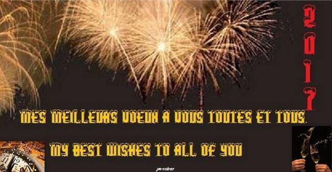 Adieu 2016, Bonjour 2017 avec mes meilleurs vœux et une bonne année 2017 à toutes et tous
