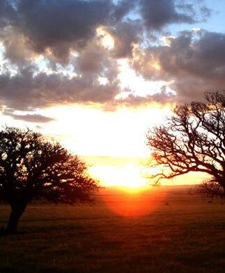 Blog de roda : Musique de relaxation, spiritualité et autres, Souffle 1 - L'appel à la traversée extrait - Le chariot Blanc et plus ...