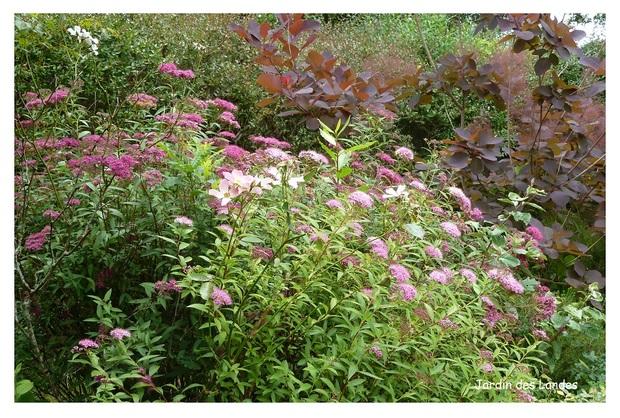 Mois de mai au jardin