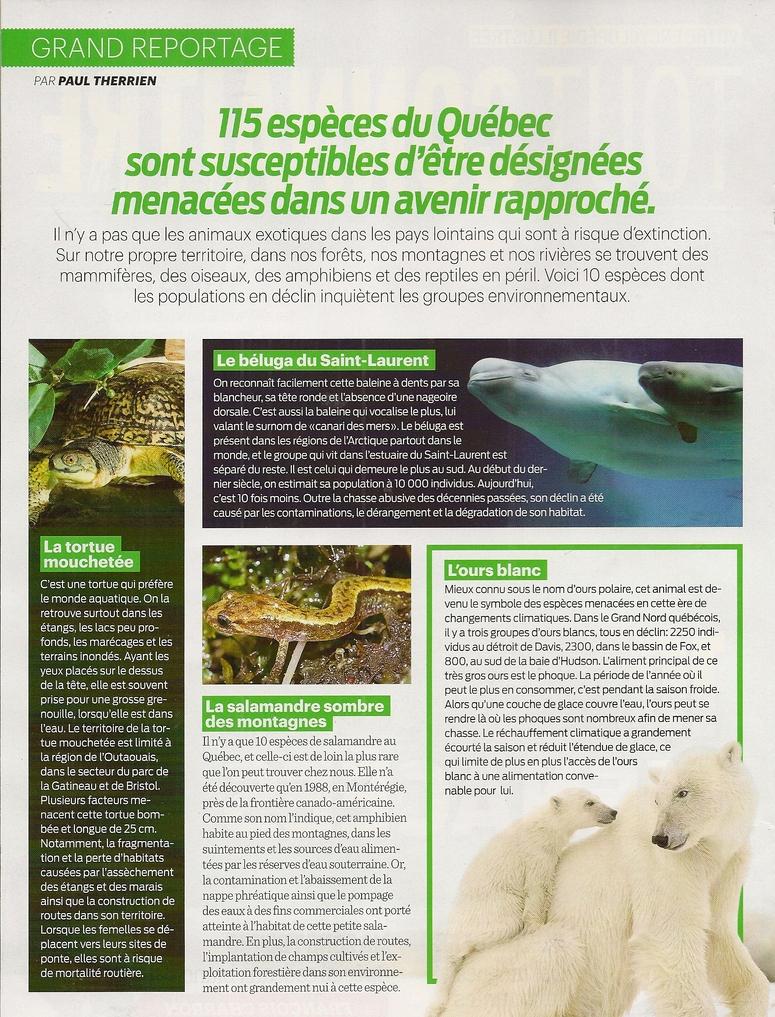 Grand Reportage:  10 espèces québécoises menacées - 2 pages
