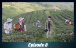 ATOTS - Episode 8