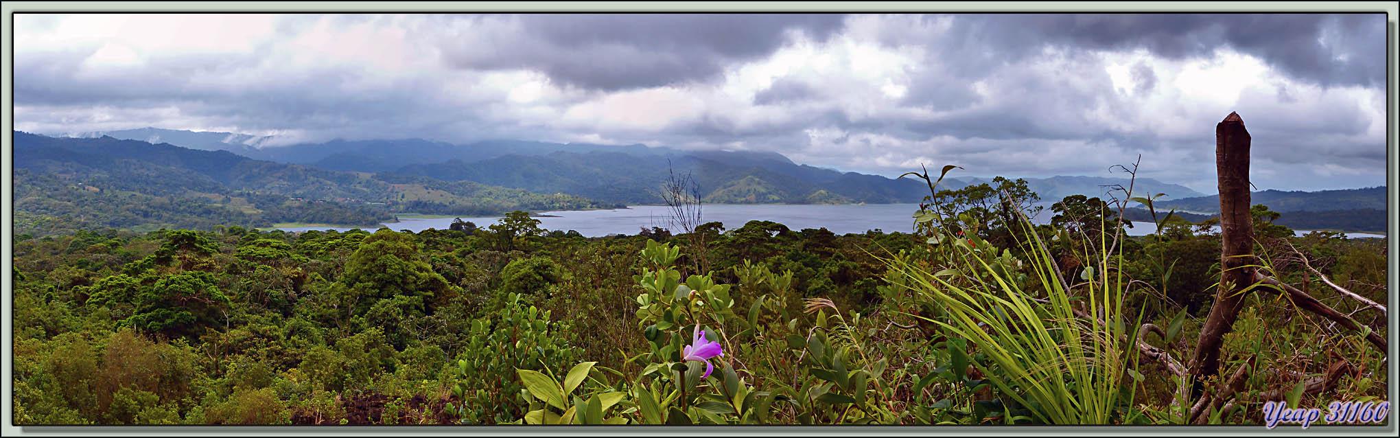 Panorama sur le Lac Arenal vu des pentes du volcan du même nom - Costa Rica