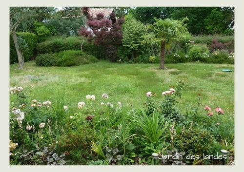 Le jardin en juillet 217.
