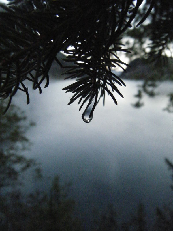 Photo_022