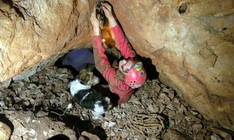 Grotte de la louvetière