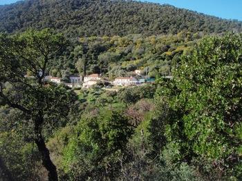 Le hameau du Dattier