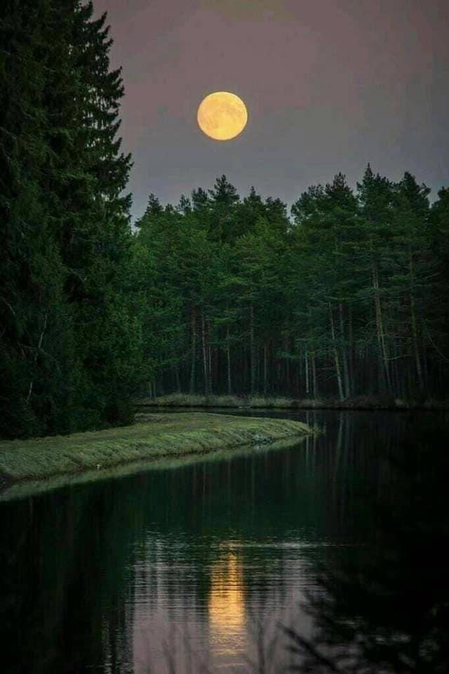 Bonne soirée, la Lune ! (Amazing Pictures)