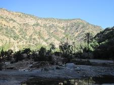 459 Maroc Sur la route d'Immouzzer